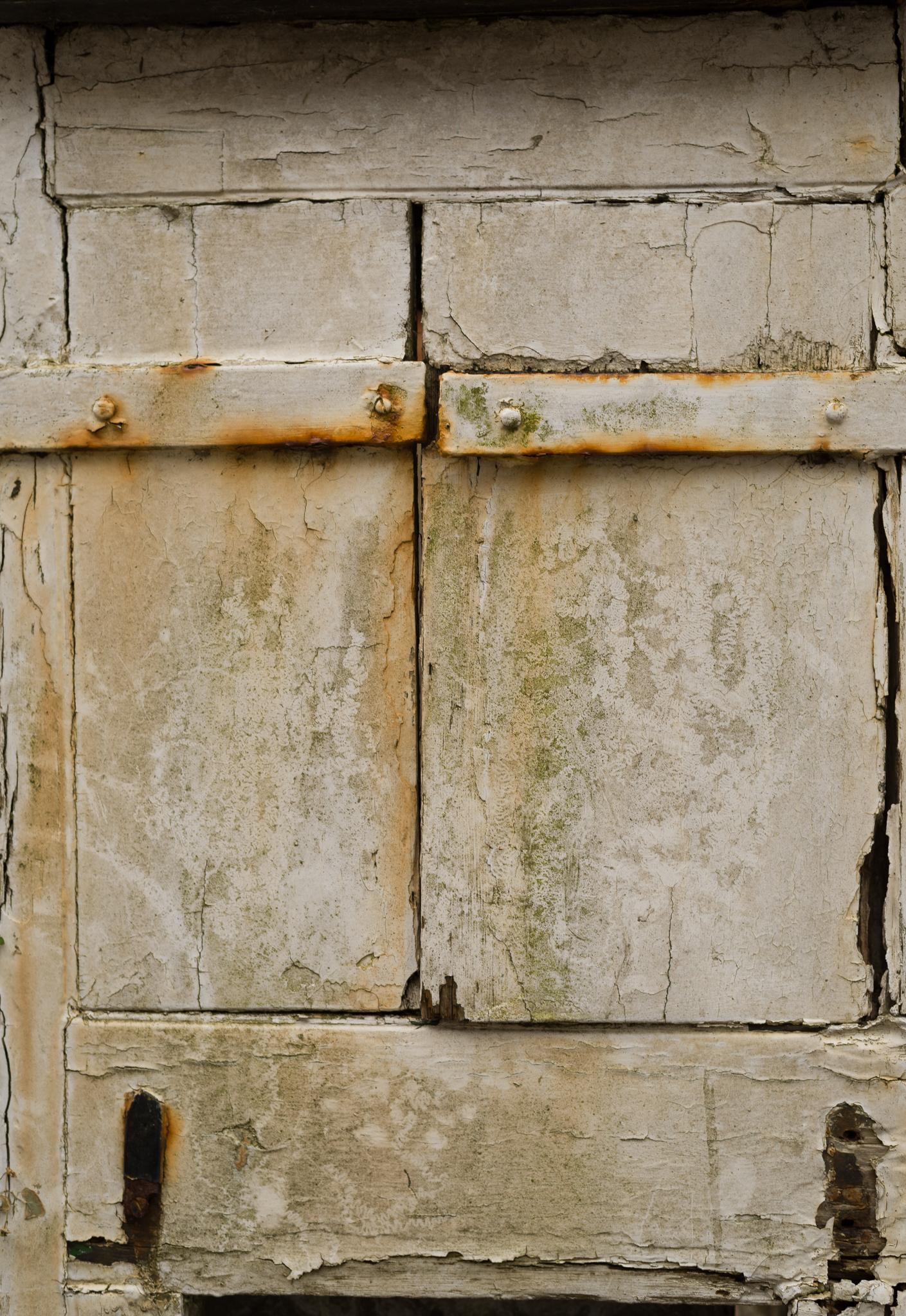 WoodPainted-8685.jpg