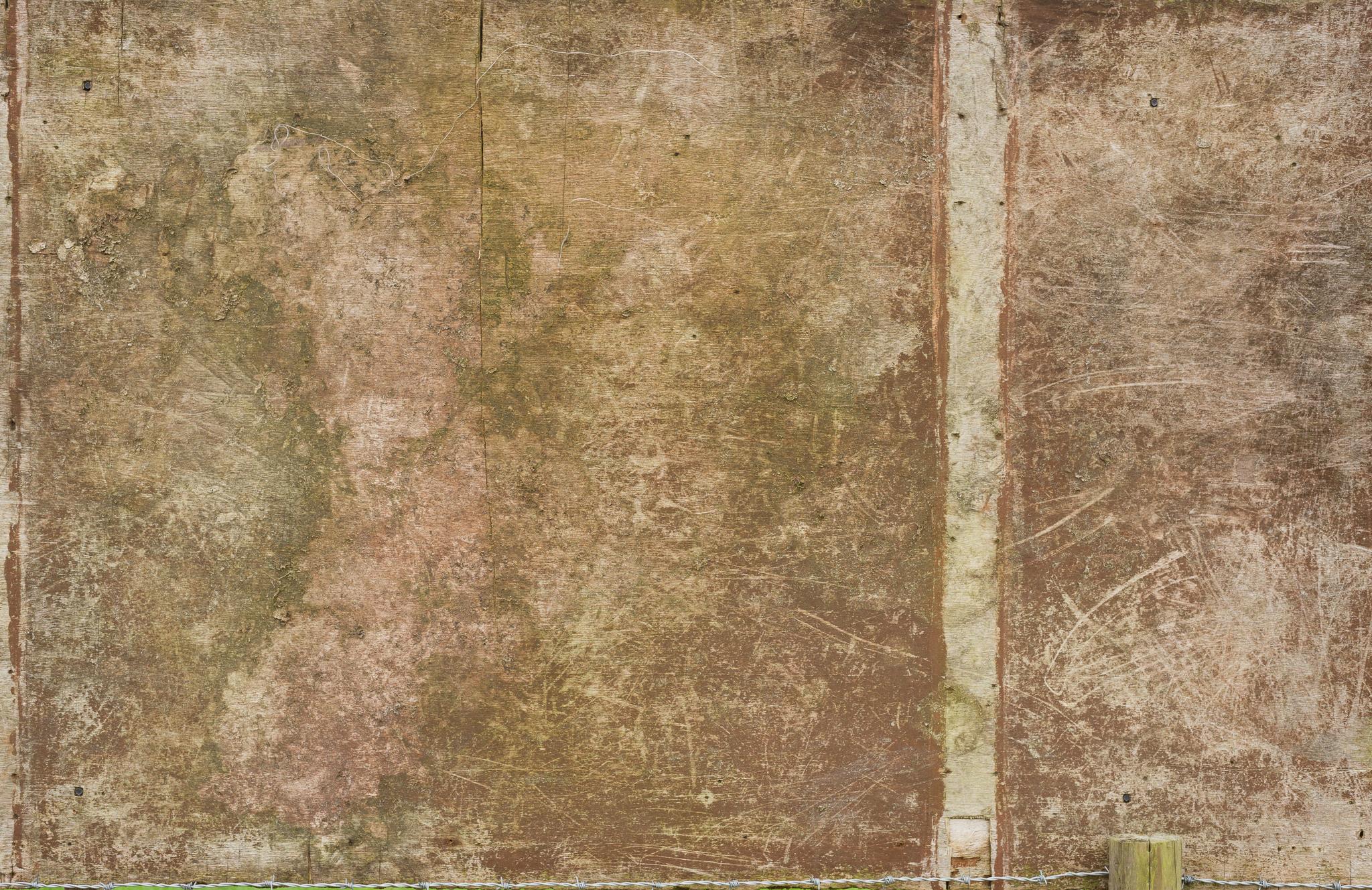 Wood-6922.jpg
