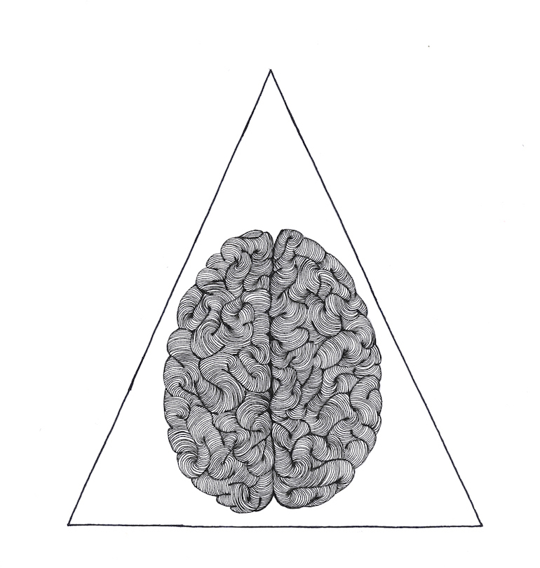 LR_MV_brain.jpeg