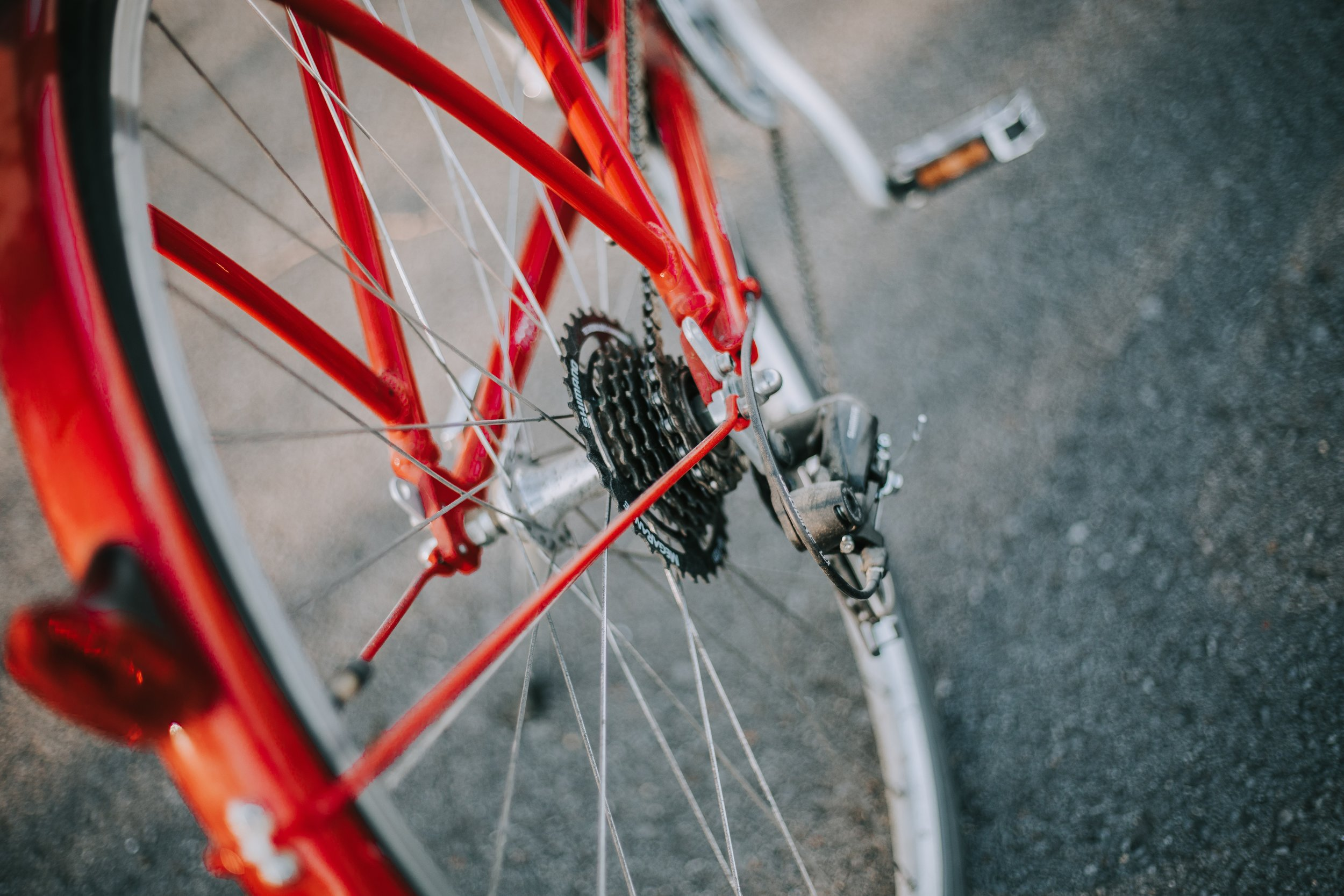 Donate - Your dollars fuel the incredibly important work of making bicycling an easy choice in our community. Please give today and make your voice heard!