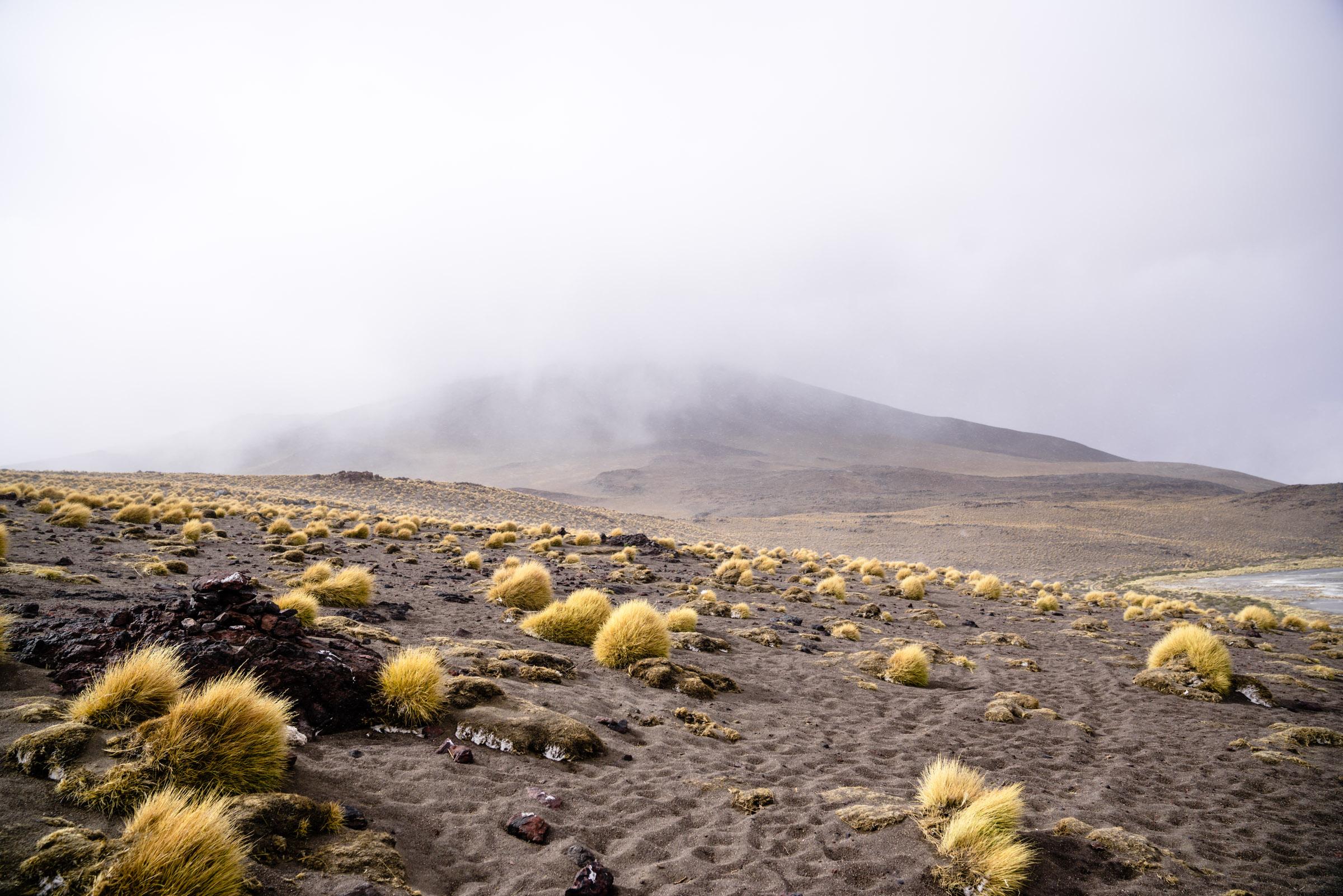 Foothills of Laguna Colorade. Bolivia