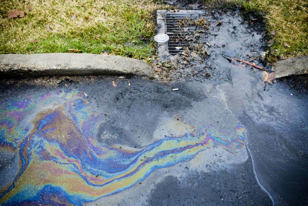"""A """"first flush"""" of all the pollutants from an asphalt road after a rain event"""