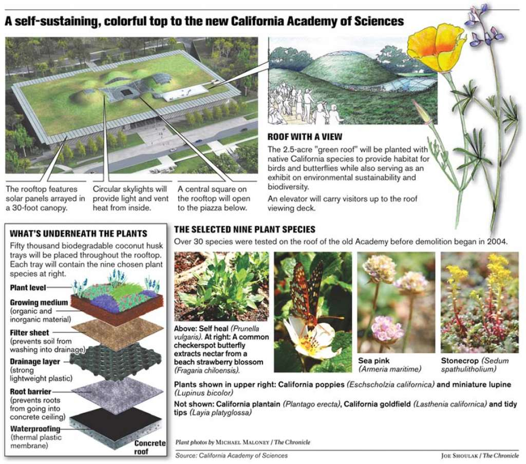 Summary details of California Academy of Science Living Roof (click to zoom). Source: SFGate