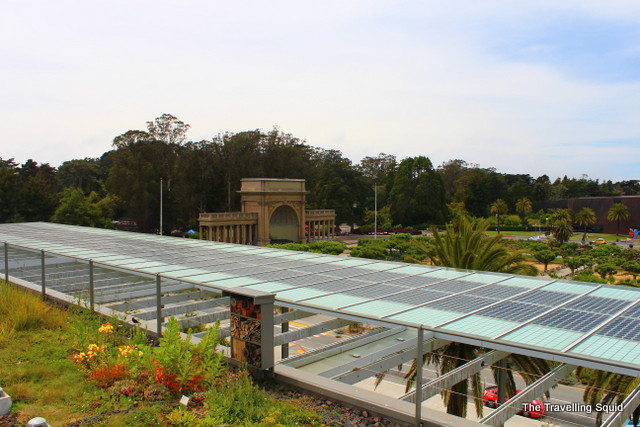 Solar cells surround the perimeter of the living roof, providing electricity and shade. Source: The Traveling Squid