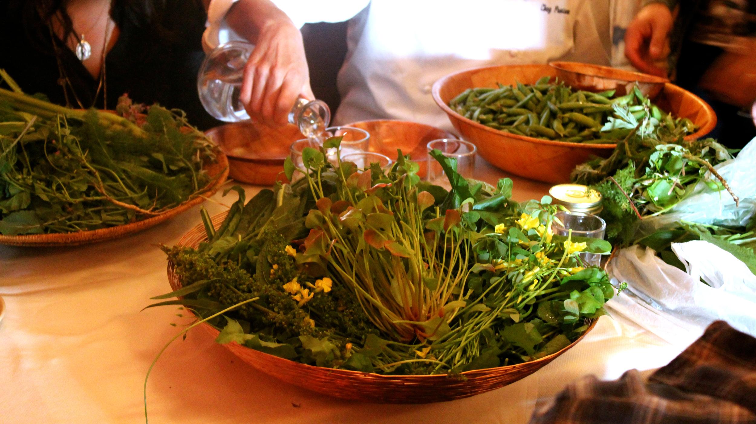 Chez Panisse tasting.jpg