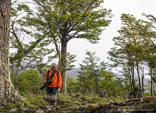 Kathy hiking in Tierra del Fuego National Park. Hasselblad H5D4
