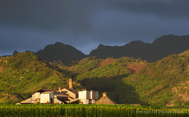 Koloa Sugar Mill  Nikon D3s, 70-200 f/2.8 @ 150mm, ISO 400, f/8.0 at 1/250 sec