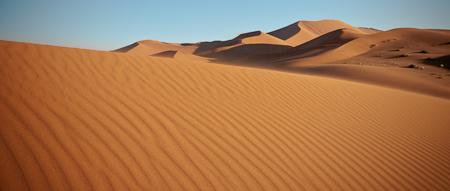 Golden Light on Dunes of Namibia  Nikon D300, 17-55mm @ 28mm, ISO 250, f16, 1/125 sec