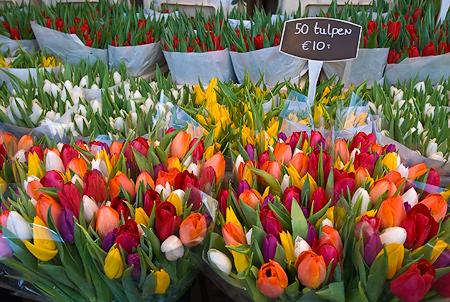 Amsterdam Tulip Market  Nikon D300, 17-55mm