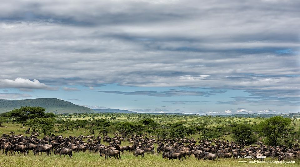 20140530_Tanzania_D810_0404-Edit.jpg