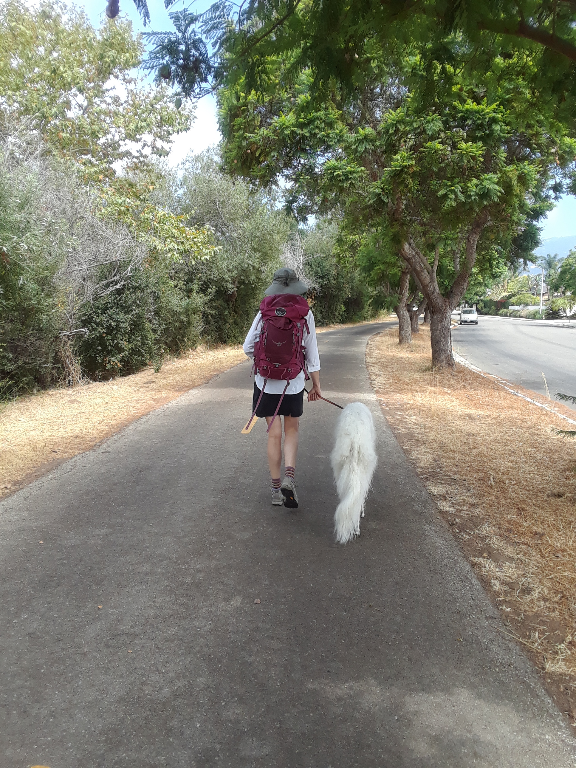 From Santa Barbara to Santiago. Training while on a walk with Keesa.
