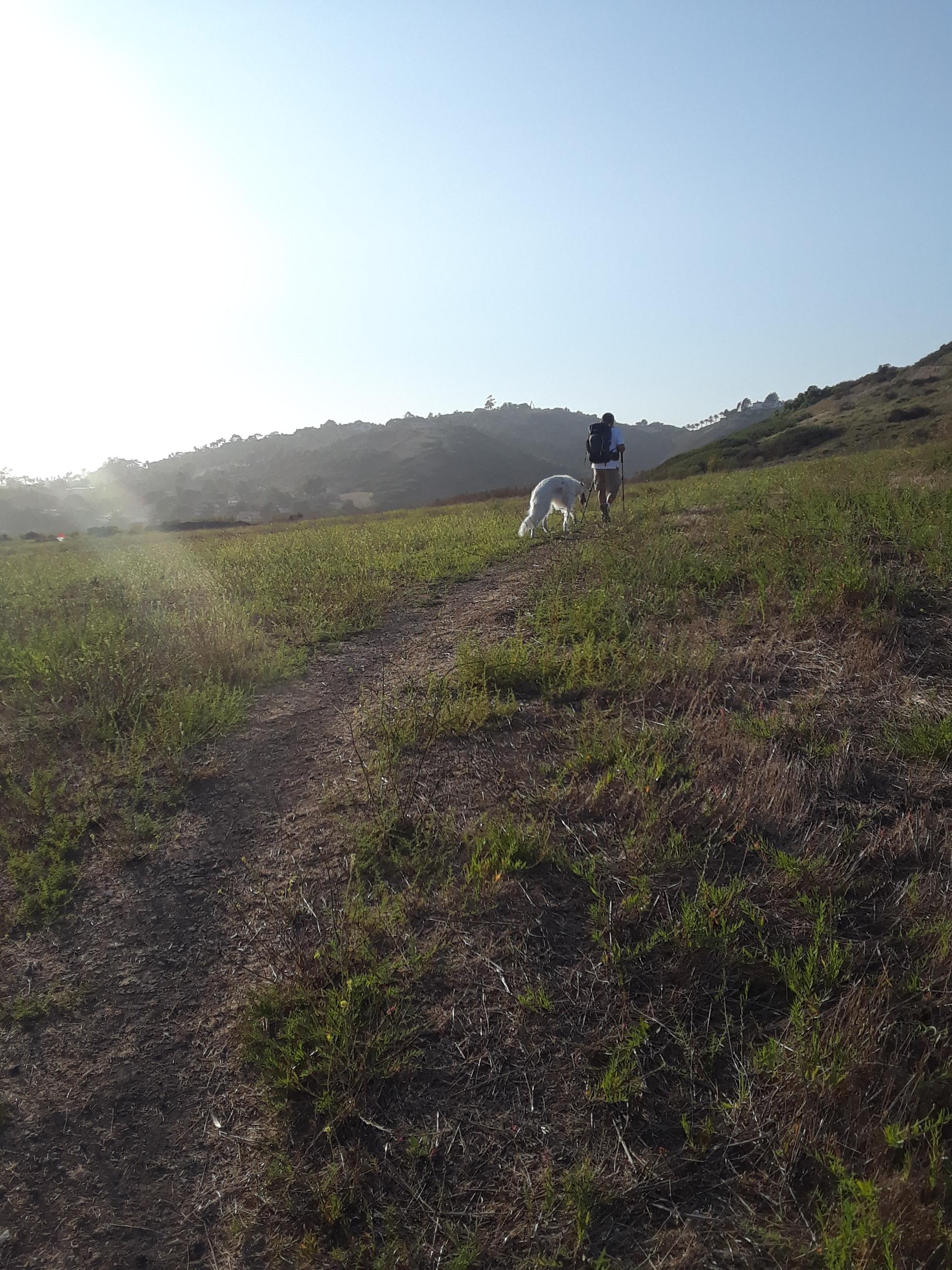 Walking the Santa Barbara hills with trekking poles.
