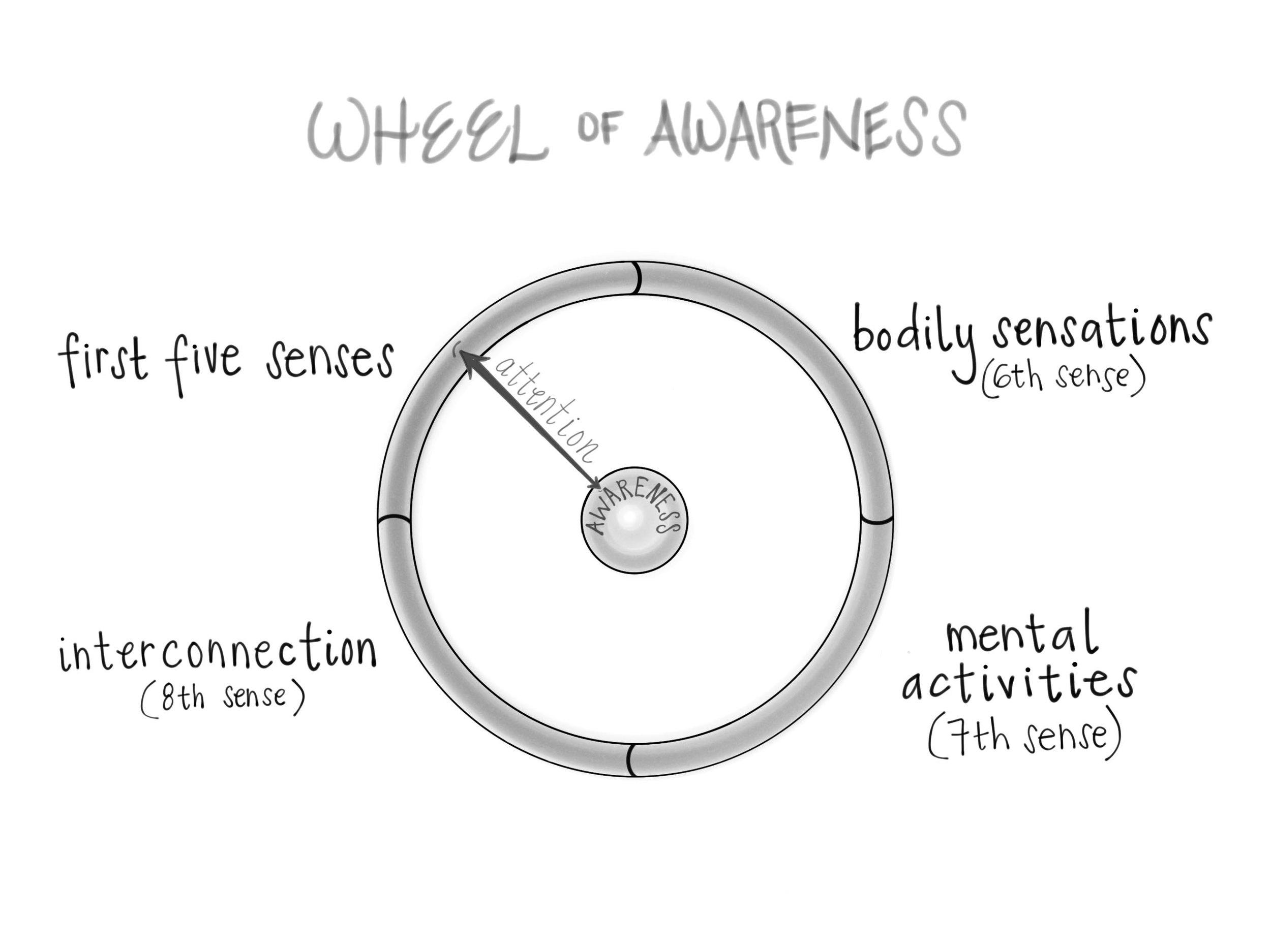 Wheel_of_Awareness.jpg