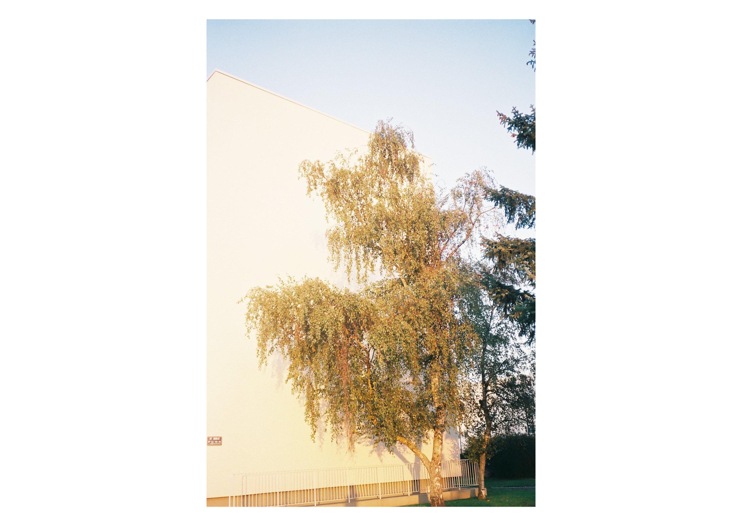 laval4.jpg