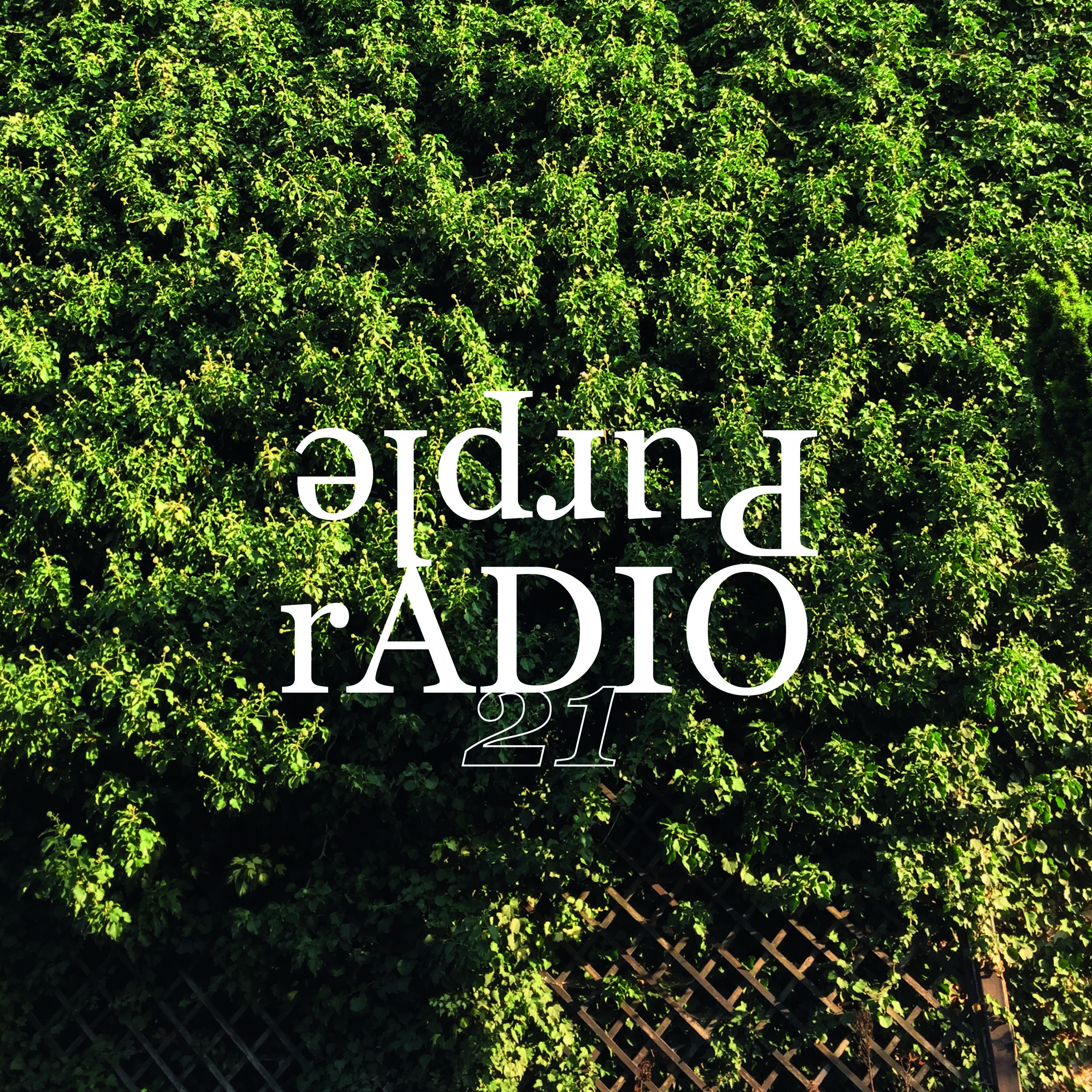 Purple Radio season 1, episode 21.jpg