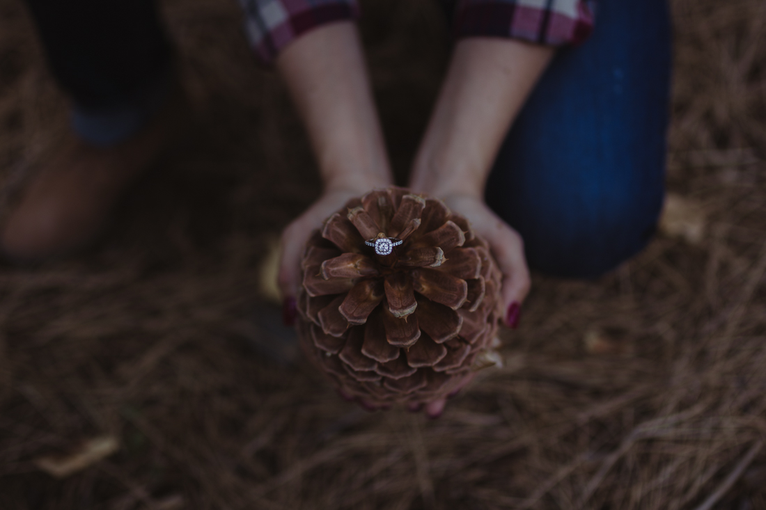 Galena Creek engagement ring photo