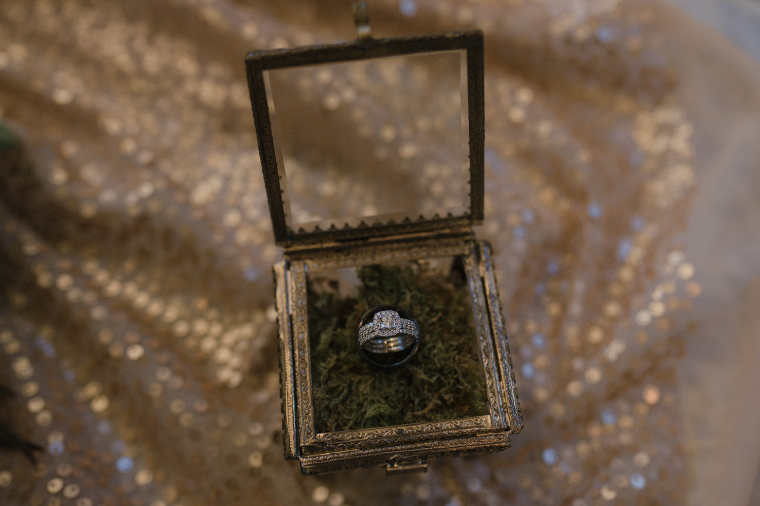 Wilbur D May Museum wedding, rings photo