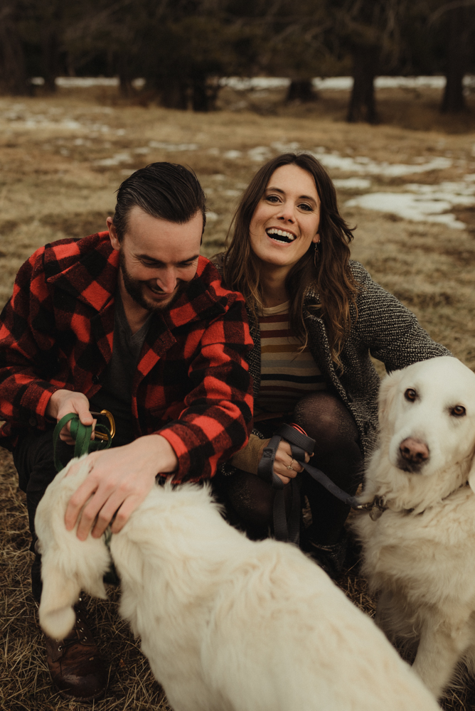 Strawberry California engagement session with dogs photo