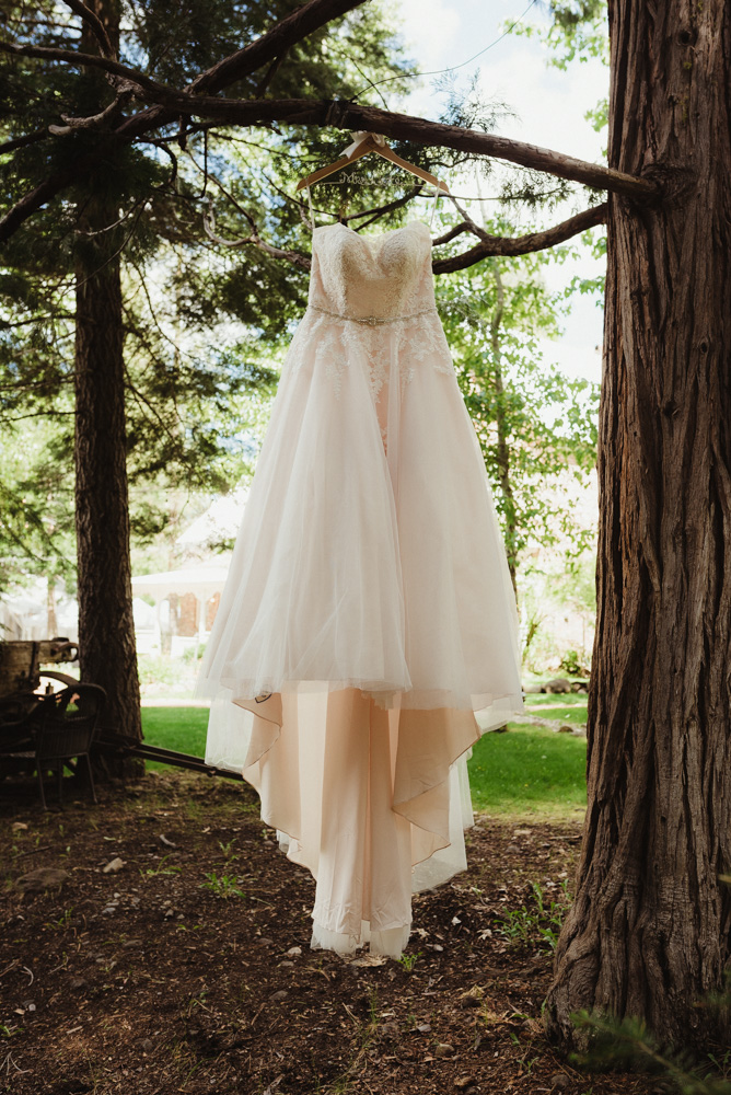 Twenty Mile House Wedding, photo of wedding dress