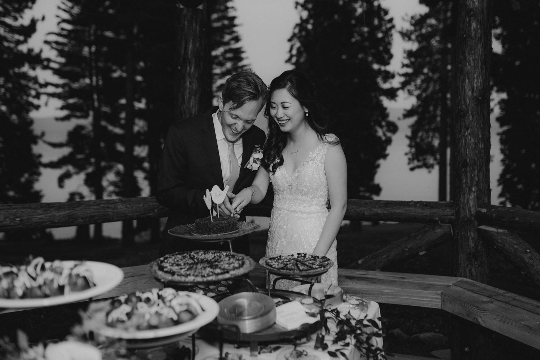 Hellman-Erman Mansion Wedding, photo of couple cutting the cake photo