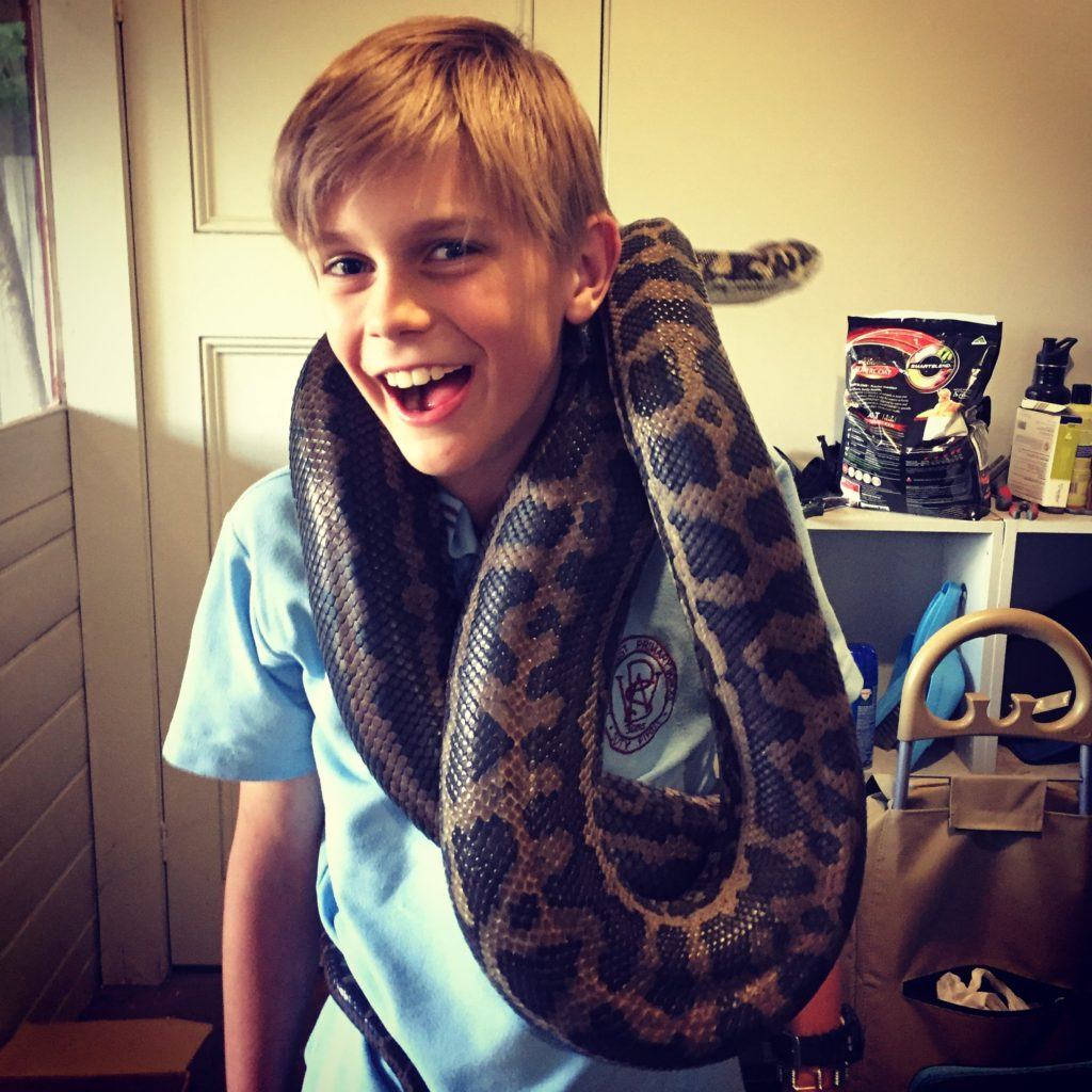 Joshua and another serpent
