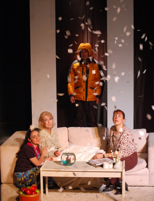 The Clean House  by Sarah Ruhl (2013 production)
