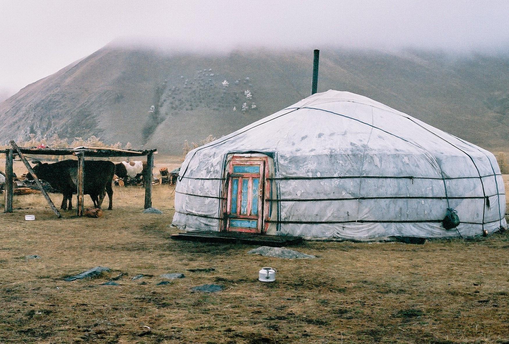 mongolia356.jpg
