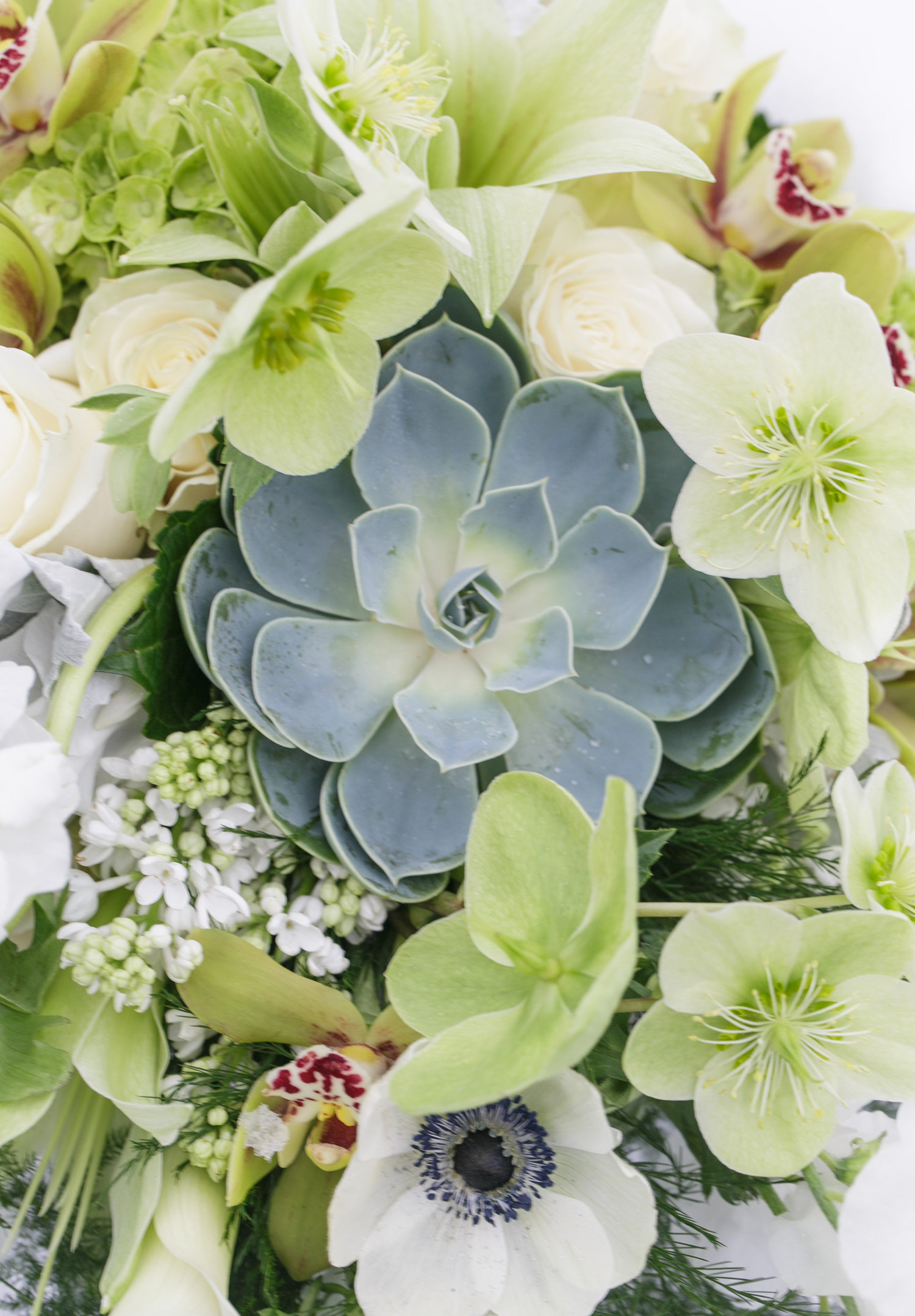 Detail of the first bridal bouquet designed by Fleur Events.                                     Photo Credit: Jen Araya Photography