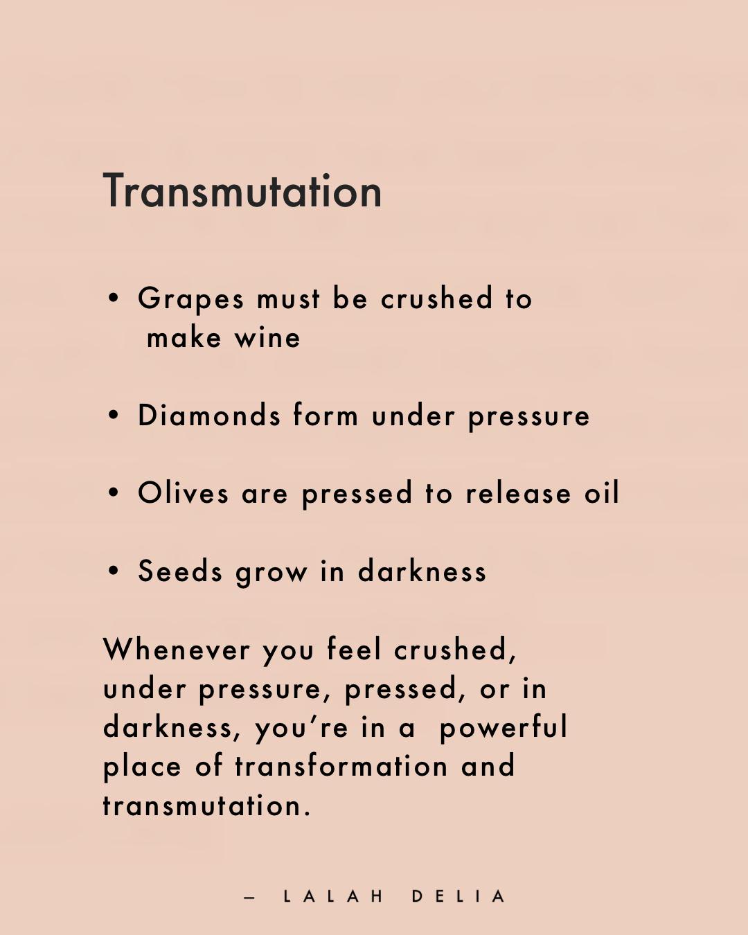 Fig. 8 | Transform and Transmute