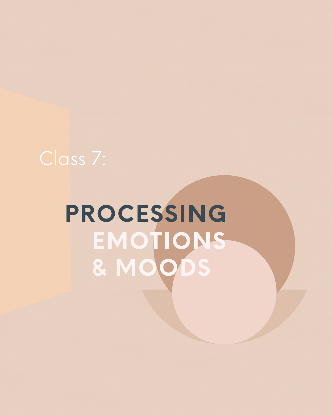Processing Emotions & Moods  -  Emotions manifest in waves and sometimes in storms.Vibrating higher daily, self-mastery, healing, restoring, and journeying empowered, is about knowing how to effectively process what you're feeling on the inside.Emotions are teachers and guides.Learn the empowering art of processing your emotions and moods, this Saturday!This class is about empowering you to (effectively) feel what you need to feel–and to (effectively) release all else, go beyond, and rise above.