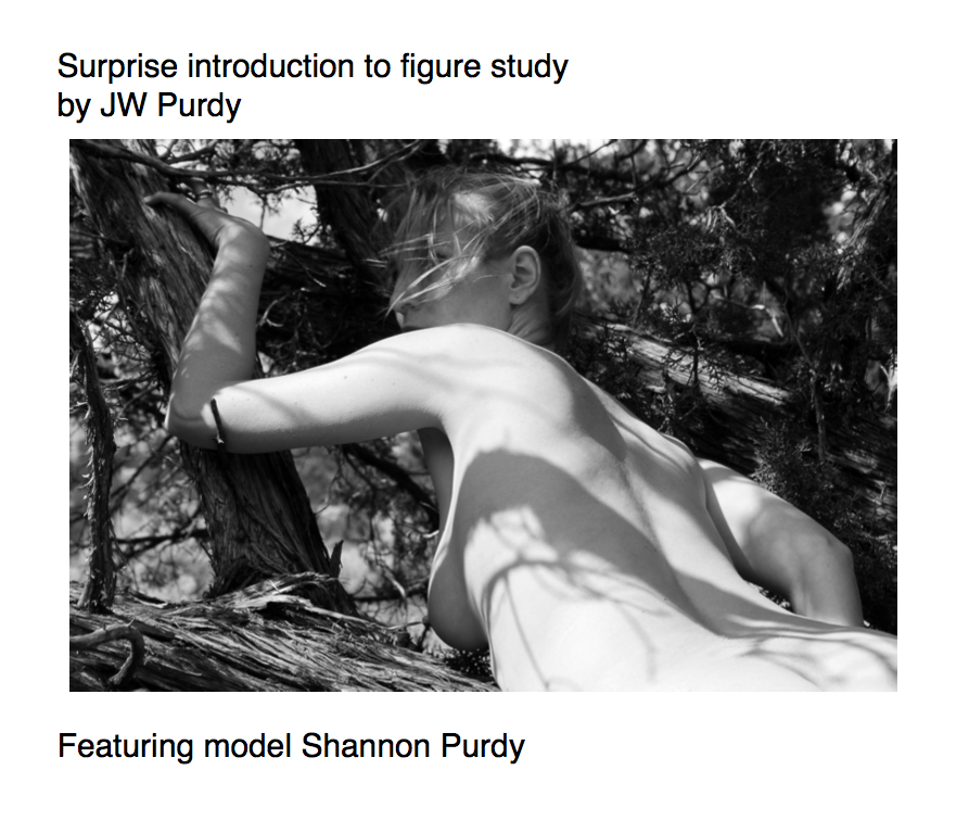 Cover Surprise introduction to figure study by JW Purdy