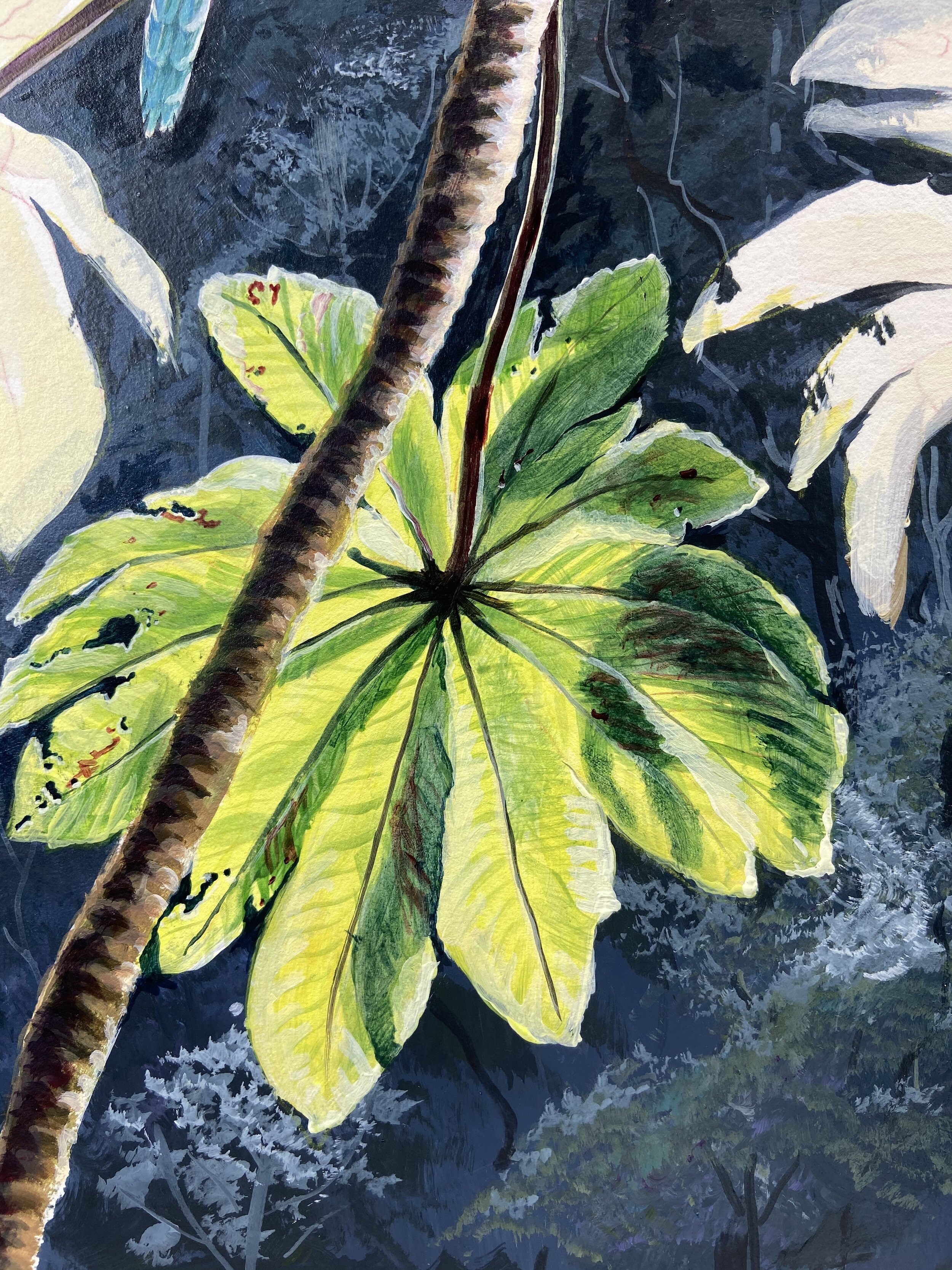 Using transparent layers of acrylic to achieve luminous finish for the large cecropia leaves. This is a theme that I've come back to, several times. It's a scene that I lived at Henri Pittier National Park in Venezuela. A lot of reminiscing a longing goes into this painting….