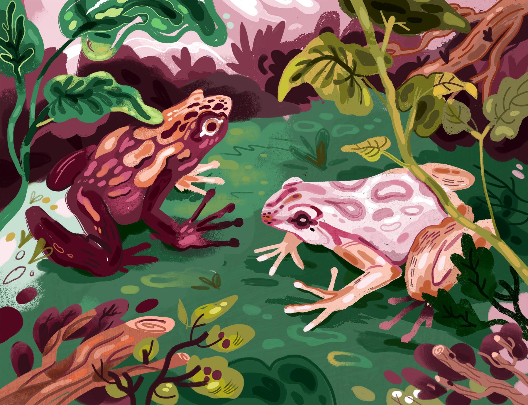 Endangered (Poison Dart Frogs).jpg