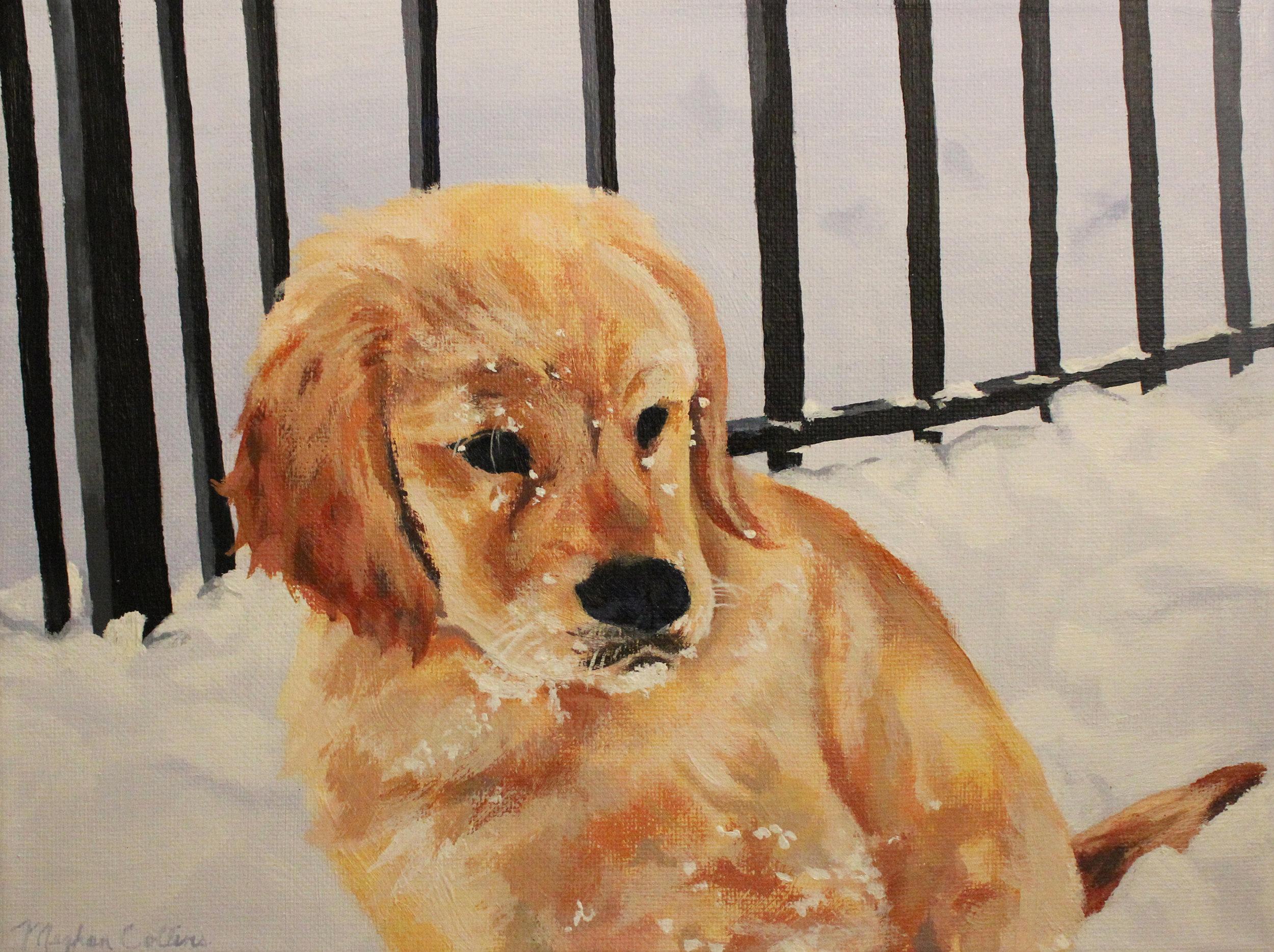 Megcutspaper_Painting_ Golden_Retriever_Puppy_In_Snow.jpg