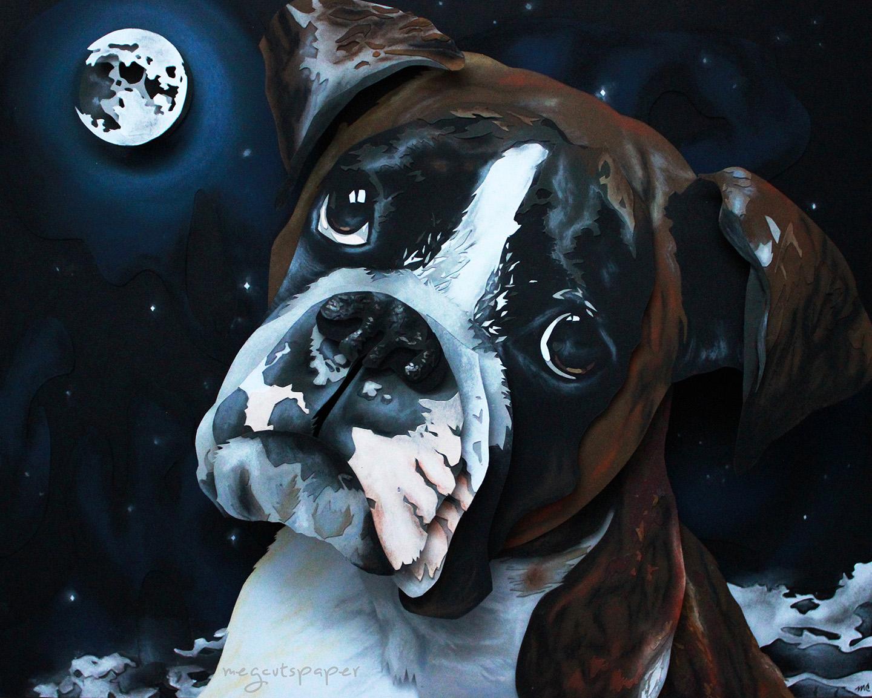 Website_Boxer_Bridget_Megcutspaper_Dog_At_Night.jpg