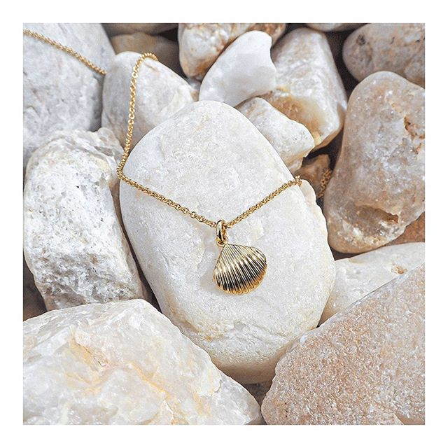 Summer jewelry select! @mejuri is about to launch their limited edition vermeil shell collection very soon (‪6/24‬). 🐚 This necklace from the collection was kindly gifted and will be on my neck all summer. Such lovely gold pieces that are so so elegant & simple. #mejuri #thefinecrew