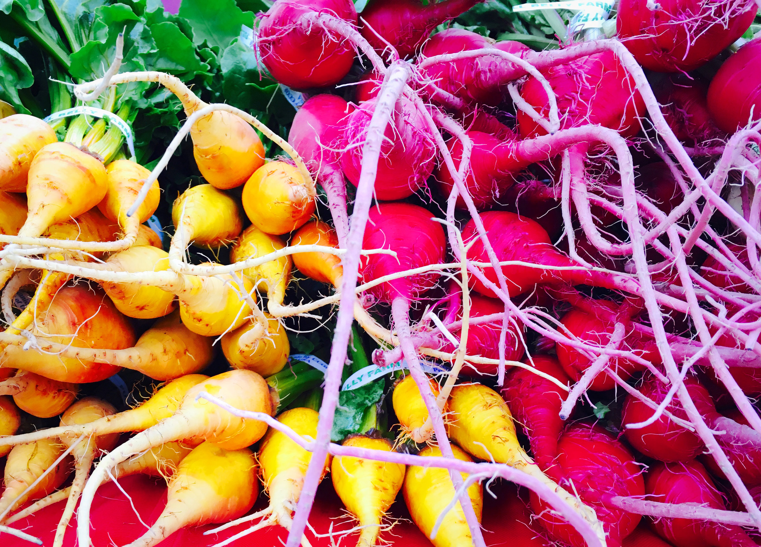 rainbow-beets-1.jpg