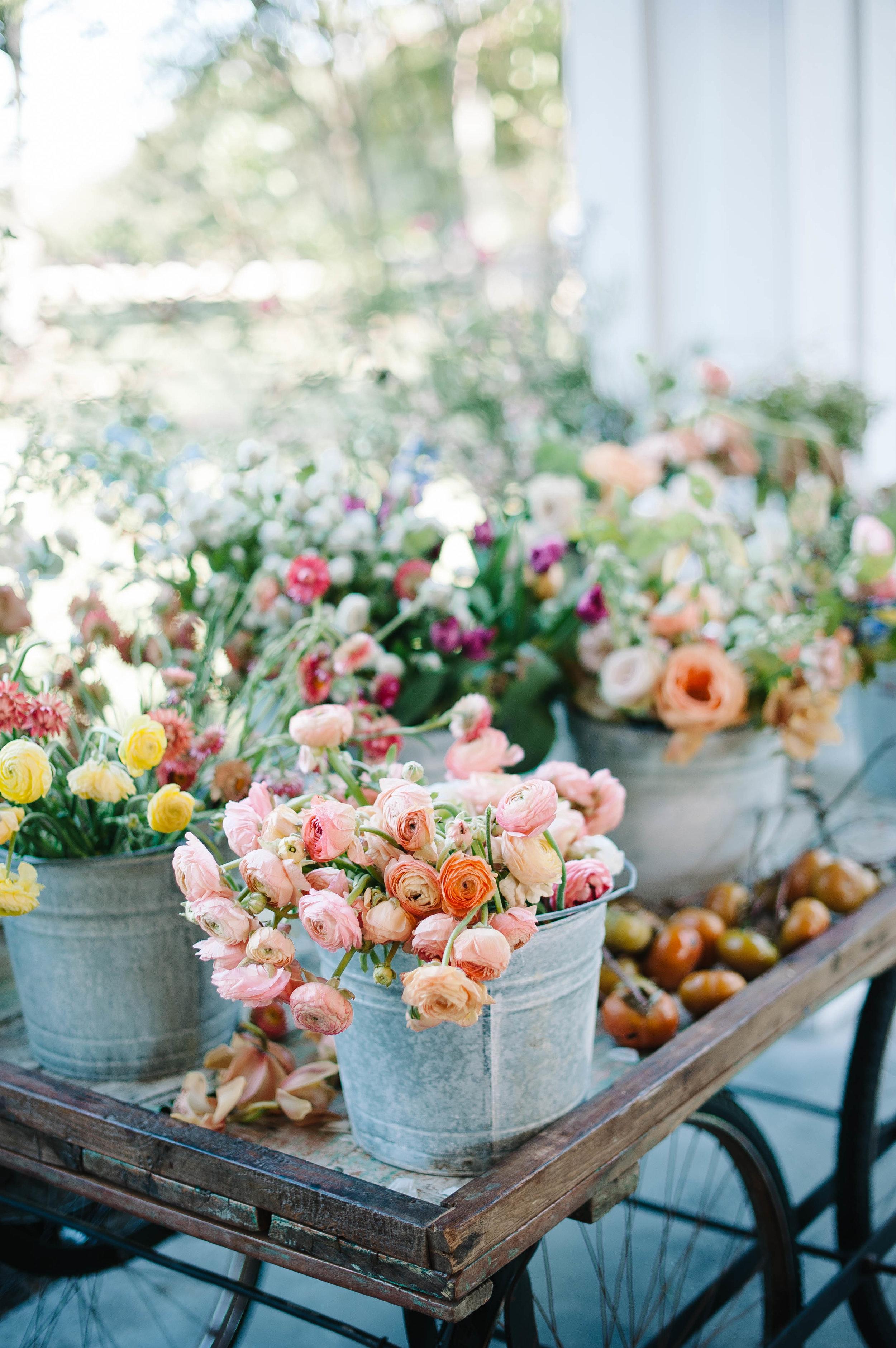 bloombashdallas-54.jpg
