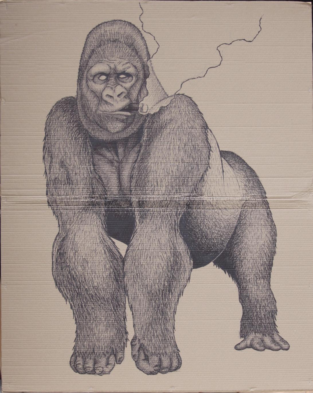 Gorilla with Cigar   2015  Sharpie on cardboard  48x60