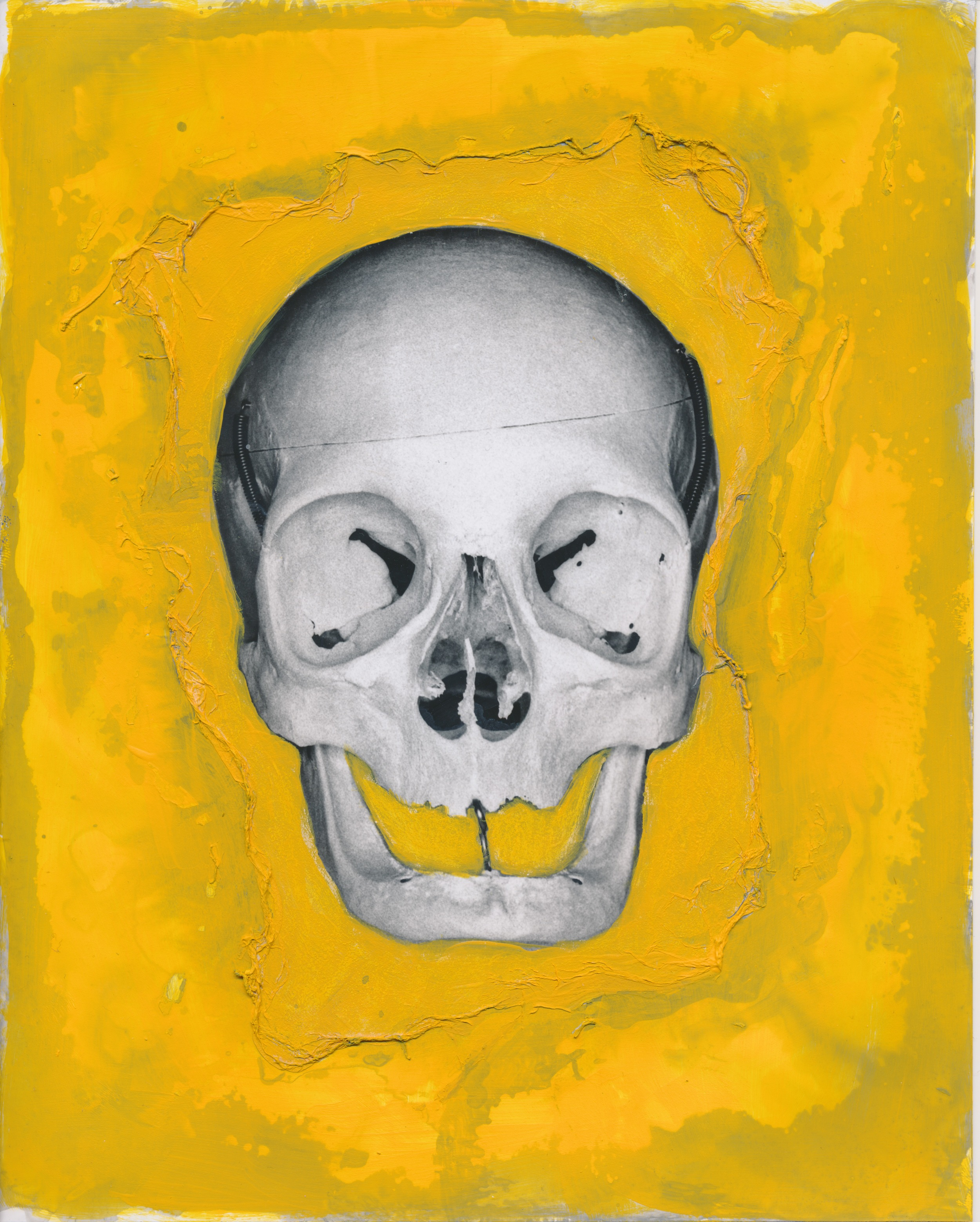 Homo sapien   2015  Acrylic on gelatin silver print  8x10