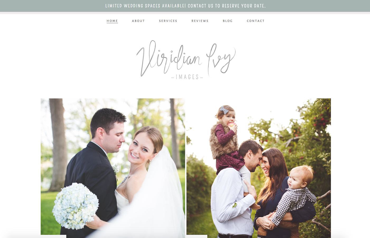 Viridian Ivy Website Homepage Design