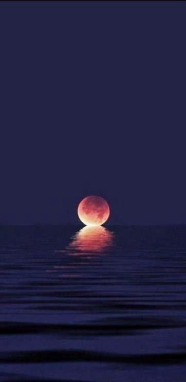 spirit-warrio-moon-sun-set-jenni-cornette.jpg