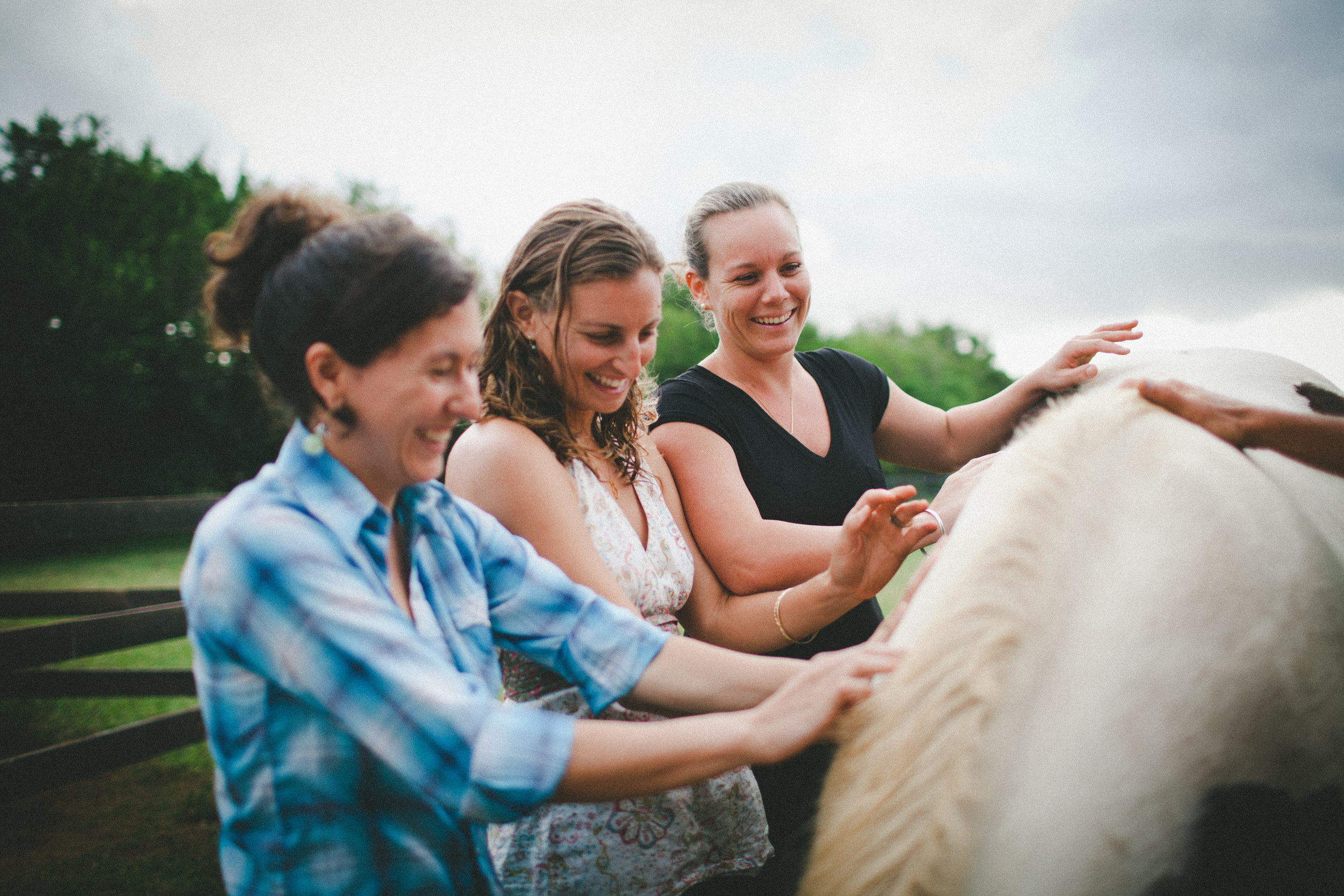 tarah-horse-cadencia-photography-5125.jpg