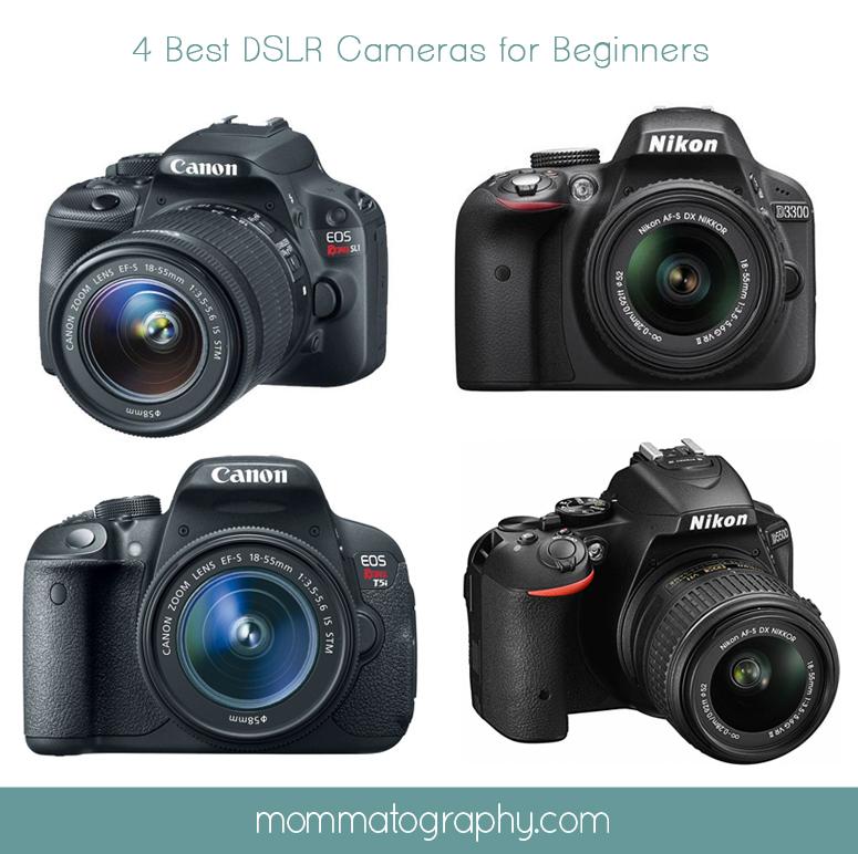 Best DSLR Cameras for Beginners - www.mommatography.com