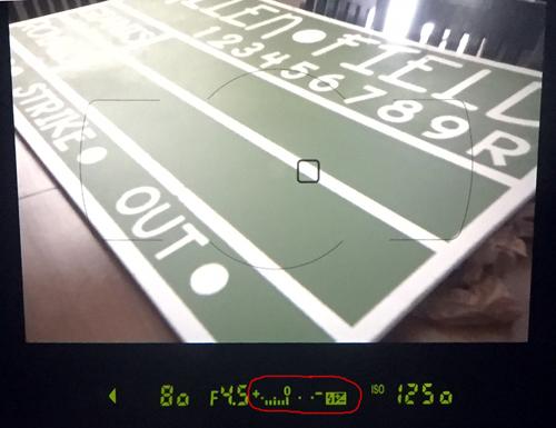 Understanding Your Exposure Meter - Overexposed - www.mommatography.com