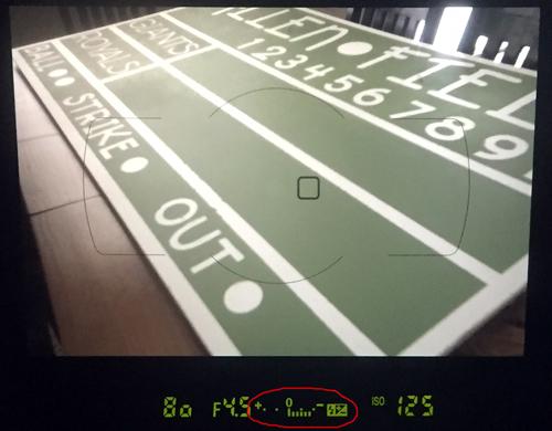 Understanding Your Exposure Meter - Underexposed - www.mommatography.com