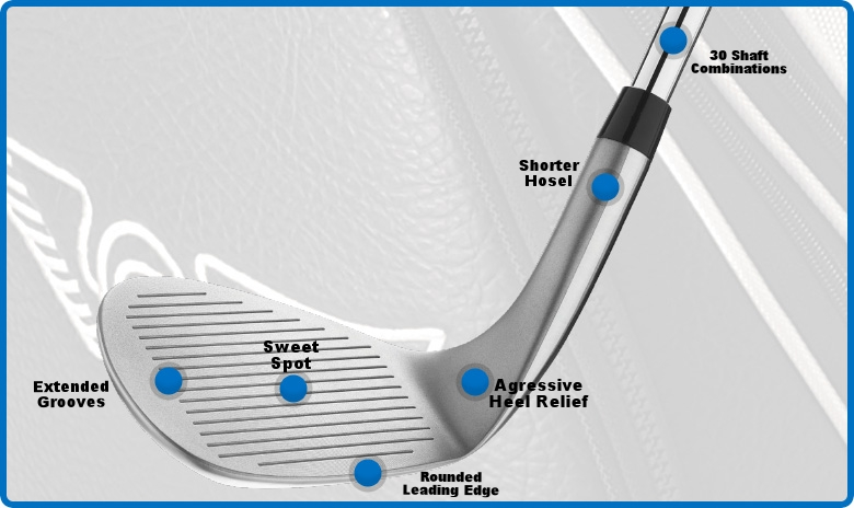 Edel Wedge Design and Technology
