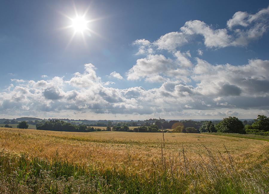 Chruchfields-Worcestershire-6.jpg