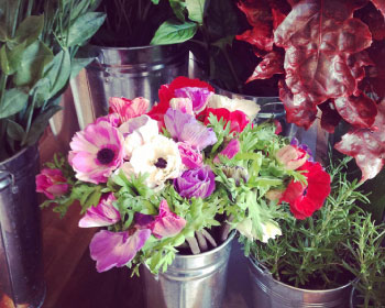 Gorgeous fresh flowers are ready to greet you in the shop every day.
