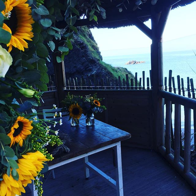 Last few weddings now for 2019. What a beaut of a day though#marriedbythesea #coastalweddings #septembersun #septemberblooms 🌻🌻🌻